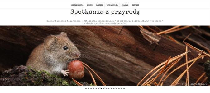 michalstanecki.com – warto odwiedzić