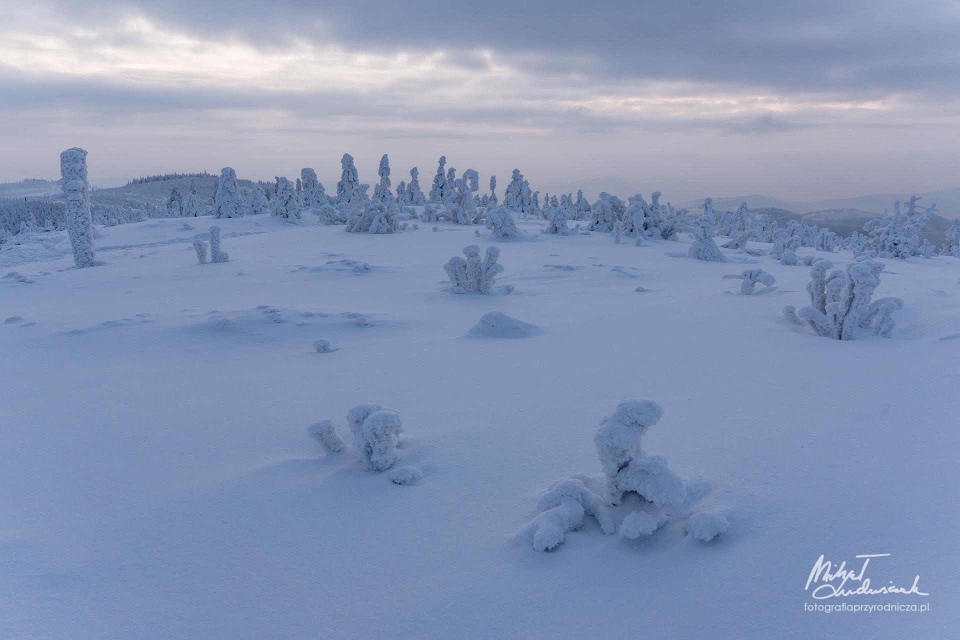 Zima na Skrzycznem, część II
