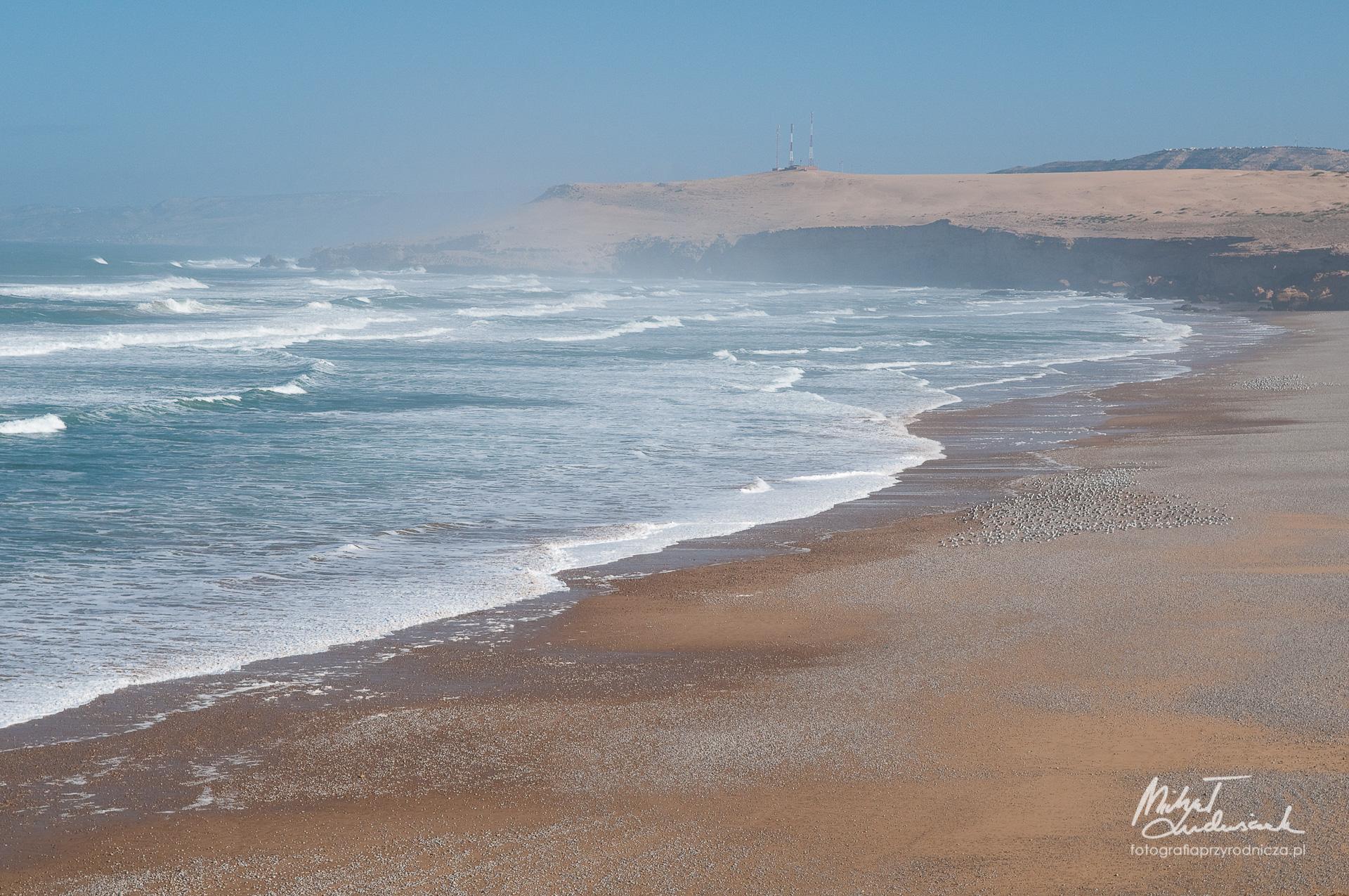 Wybrzeże Atlantyku